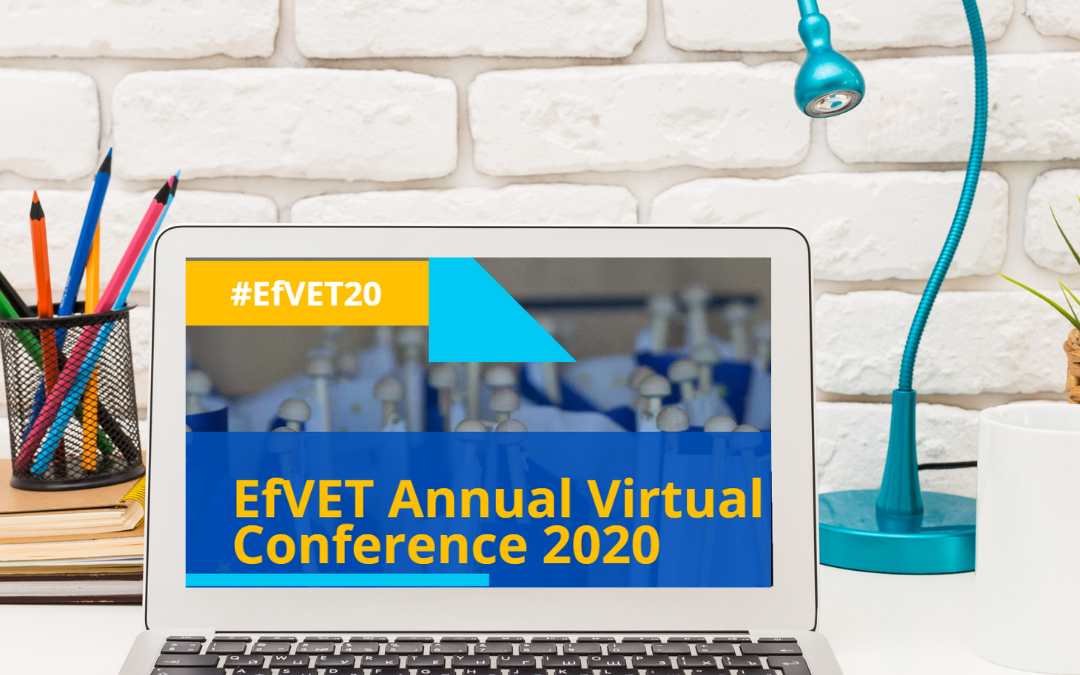 "EfVET Conference ""COVID -19 Beyond 2020: A New Generation Of VET"""